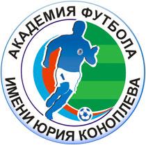 чемпионат мира по футболу украина